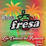 Banda Fresa Rosa