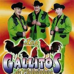 Los Gallitos de Chihuahua